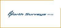 Northgroup - Logo